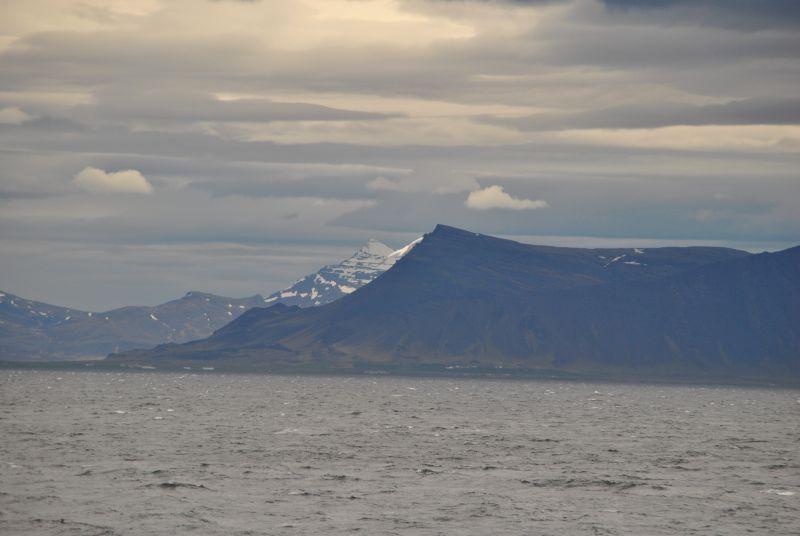 Stormachtige walvistocht. Het lijkt best kalm, dat was het niet.